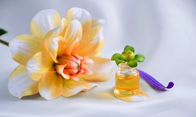 51+ Best Fragrance Oils in India [REVIEW]- Top Brand Aroma